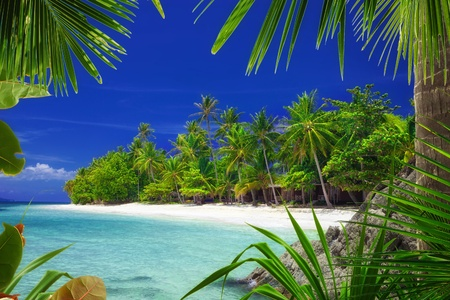 View of nice tropical  beach  with some palms around  Stock Photo