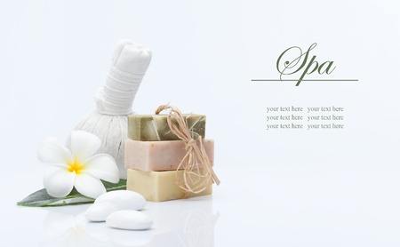 spa theme object on white background  banner  lots of copy space Stock Photo - 13678886
