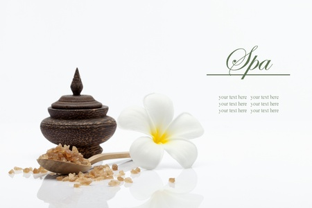 frangipani flower: spa theme object on white background  banner  lots of copy space