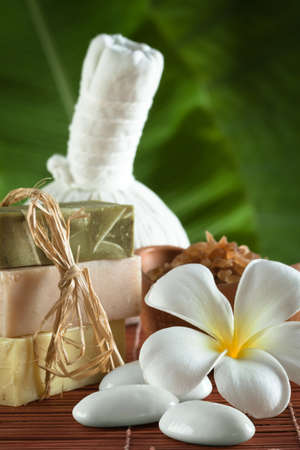 close up view of spa theme objects on green back Stock Photo - 13678951