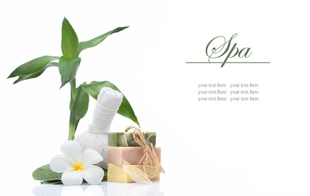 body spa:  view of spa theme objects on white background  banner  lots of copy space