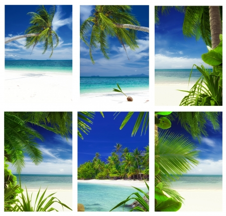 Tropic theme collage composed of different images 写真素材