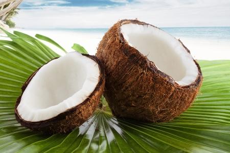 열대 환경에 좋은 신선한 코코넛의보기를 닫습니다 스톡 콘텐츠