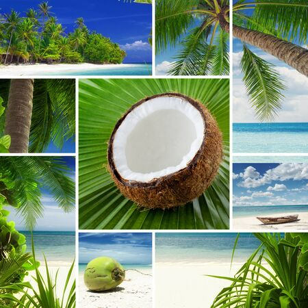 Tropic theme collage composed of different images photo