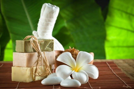 view of spa theme object on color background Stock Photo