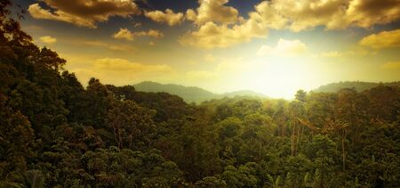 crepuscular: panoramic view of nice tropical sunset over jungle hills