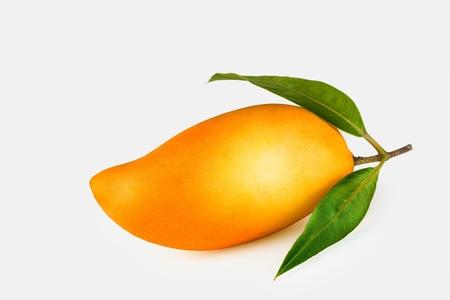 Nahaufnahme auf schöne frische Mango auf weißem Rücken