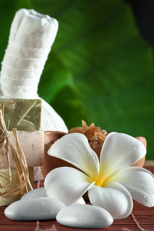 close up view of spa theme objects on green back Stock Photo - 18224499