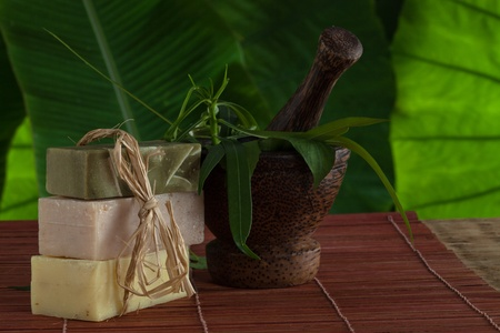 view of spa theme object on color background Stock Photo - 18547428