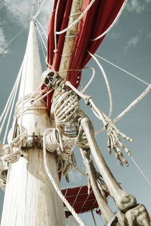 close up view of  human skeleton hanging out in summer environment photo