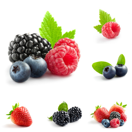 berries: berry theme  mix composed of different images