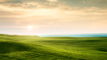 sea grass: panoramic view of nice green hill on blue sky background