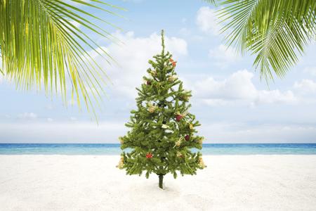 beach happy new year: view of Christmas tree on wild empty tropical beach Stock Photo