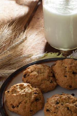 oatmeal cookie: close up view of nice homemade cookies with milk