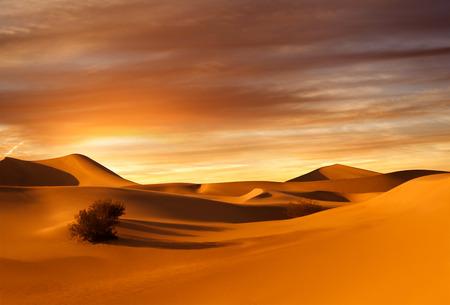 warm climate: view of nice sands dunes at Sands Dunes National Park sand, dune, desert, libya, egypt, sun, outdoor, hill, adventure, rough, warm, climate, travel , shadow