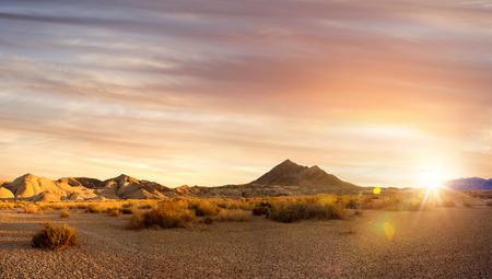 죽음의 계곡 국립 공원에있는 바위와 관목의 전망 스톡 콘텐츠