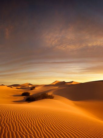 erg: view of nice sands dunes at Sands Dunes National Park Stock Photo
