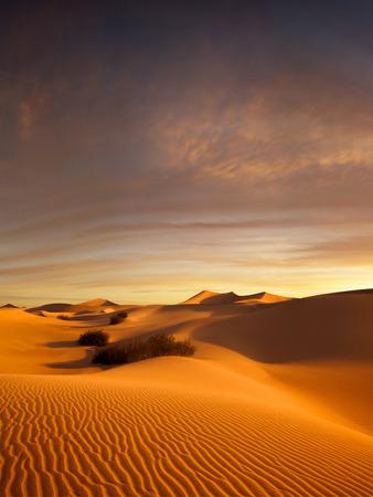 view of nice sands dunes at Sands Dunes National Park Banque d'images