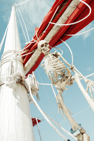 shrouds: close up view of  human skeleton hanging out in summer environment Stock Photo