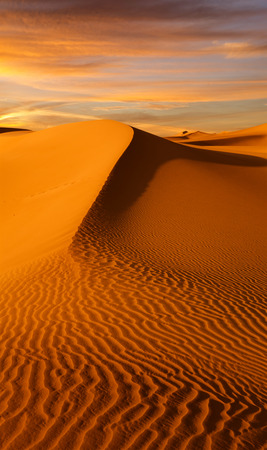 view of nice sands dunes at Sands Dunes National Park Standard-Bild