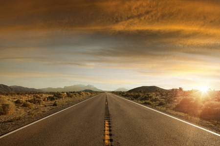desert: panoramic  view of nice summer empty road  on sunset