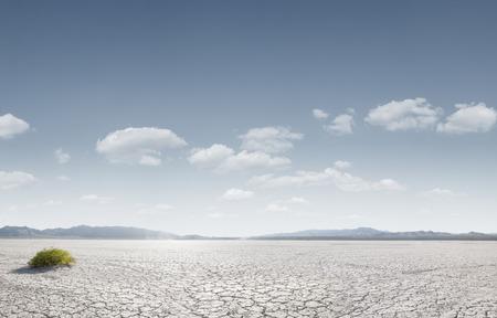 파노라마 뷰는 뒷면에 약간의 산들과 죽음의 골짜기에 마른 사막 중독
