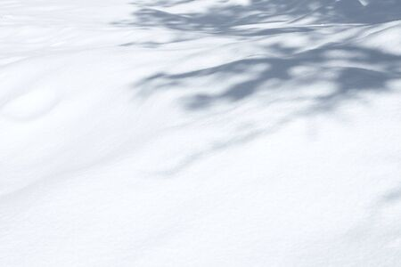 snowbank: close up view of nice fresh snowbank surface with some shadows on it Stock Photo