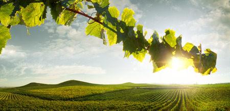 countryside landscape: view of nice italian sunny summer countryside landscape Stock Photo