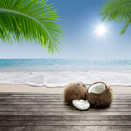 copra: Close up view of nice fresh coconut in tropical environment