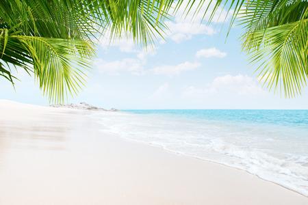 Ansicht der schönen tropischen Strand mit einigen Palmen