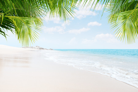 View of nice tropical beach with some palms Stock Photo