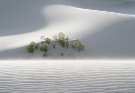 view of nice sands dunes at Sands Dunes National Park Stock Photo