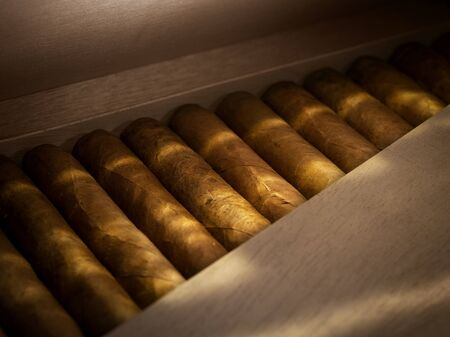 close up view of box of  cuban hand made cigars in wooden humidor 版權商用圖片