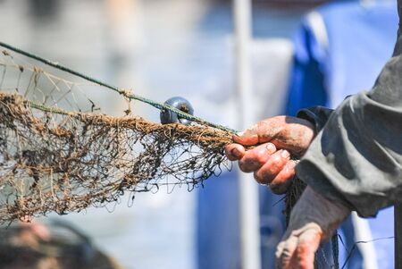 Close-Up hands of Fisherman Pulling The Fish Net. Selective focus.