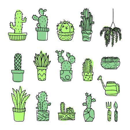 Set of fancy cactus plants vector illustration
