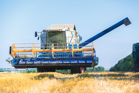harvester: Combine harvester working on sunny summer day.