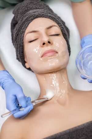 beautician applies face mask with brush to young woman in Spa sa Stock Photo