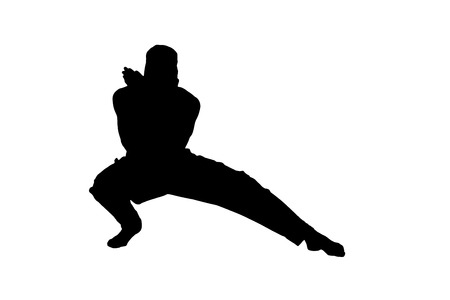 command: Male ninja silhouette on white background