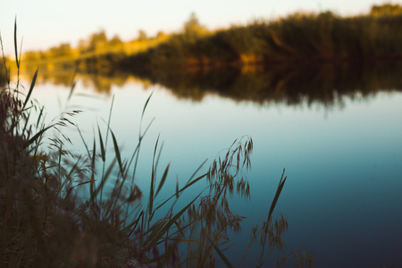Green grass on background of  river