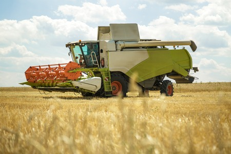 Working combine harvester in a wheat field. Agricultural background.