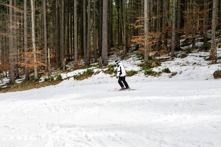 skier is skiing down the slope in the woods