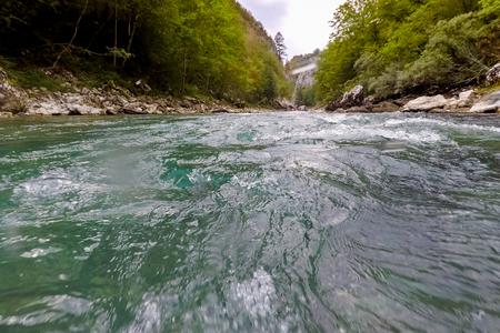 mountain river Tara in Montenegro