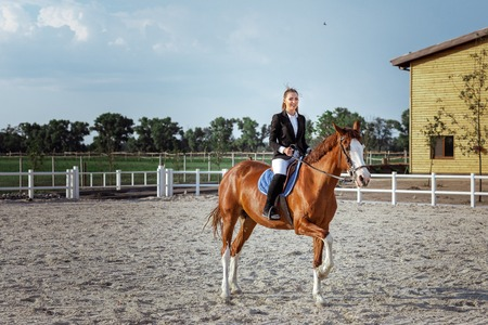 Rider elegant woman riding her horse outside Stock Photo