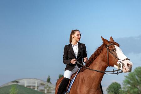 Jinete elegante mujer montando su caballo fuera