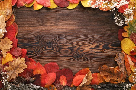 autumn leaves, acorns and flowers on wooden background Stock Photo