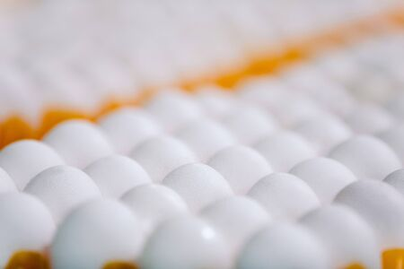 lot of white clean fresh eggs on tray . Egg factory industry. selective focus Stock Photo