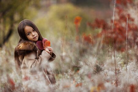 portrait of cute smiling little girl playing with autumn fallen leaves Фото со стока