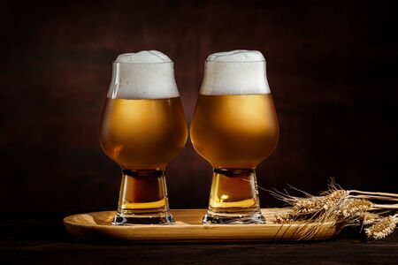 two glasses of cold golden beer and wheat spikelets on dark background. Stock Photo