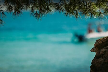 pine tree and amazing blue sea background . Summer vacation and travel . Copy space. blur boat on background