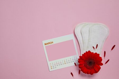 menstrual sanitary pads, feminine calendar with copy space and red flower on pink background, .Feminine hygiene products. top view. mock up